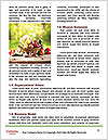 0000074662 Word Template - Page 4