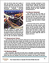 0000074673 Word Template - Page 4