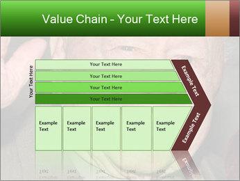 0000074686 PowerPoint Template - Slide 27