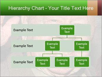 0000074686 PowerPoint Template - Slide 67