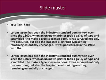 0000074690 PowerPoint Templates - Slide 2