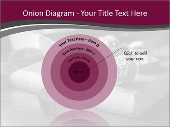 0000074690 PowerPoint Templates - Slide 61