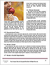 0000074690 Word Templates - Page 4