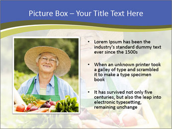 0000074692 PowerPoint Templates - Slide 13
