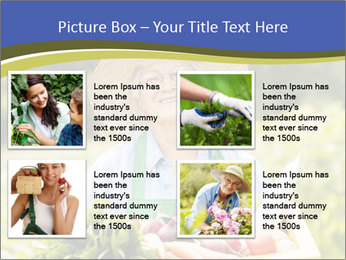 0000074692 PowerPoint Templates - Slide 14
