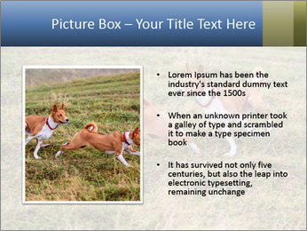 0000074694 PowerPoint Templates - Slide 13