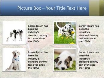 0000074694 PowerPoint Templates - Slide 14