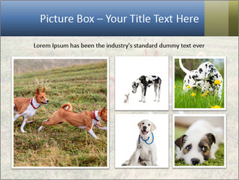 0000074694 PowerPoint Templates - Slide 19