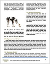 0000074694 Word Templates - Page 4