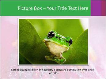0000074698 PowerPoint Template - Slide 15