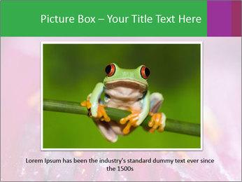 0000074698 PowerPoint Template - Slide 16