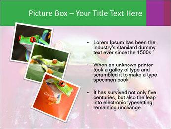 0000074698 PowerPoint Template - Slide 17