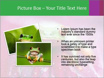 0000074698 PowerPoint Template - Slide 20