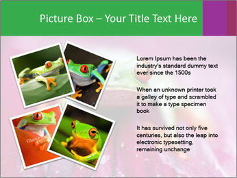 0000074698 PowerPoint Template - Slide 23