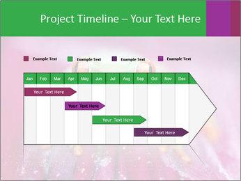 0000074698 PowerPoint Template - Slide 25