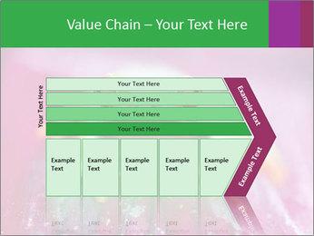 0000074698 PowerPoint Template - Slide 27