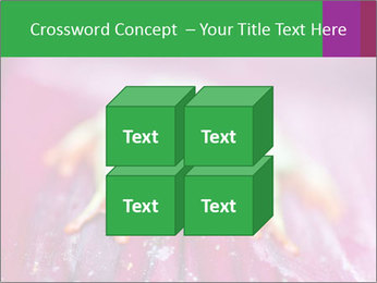 0000074698 PowerPoint Template - Slide 39