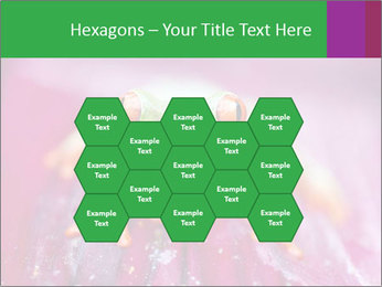 0000074698 PowerPoint Template - Slide 44