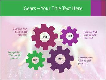 0000074698 PowerPoint Template - Slide 47