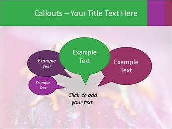 0000074698 PowerPoint Template - Slide 73