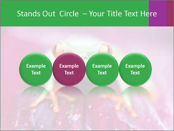 0000074698 PowerPoint Template - Slide 76
