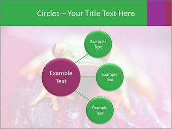 0000074698 PowerPoint Template - Slide 79