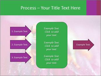 0000074698 PowerPoint Template - Slide 85