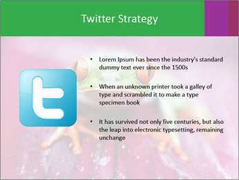 0000074698 PowerPoint Template - Slide 9