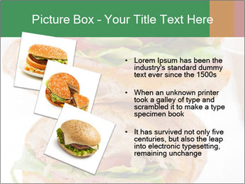 0000074707 PowerPoint Template - Slide 17