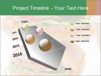 0000074707 PowerPoint Template - Slide 26