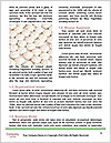 0000074708 Word Templates - Page 4