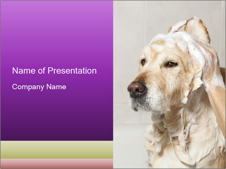 0000074715 PowerPoint Templates