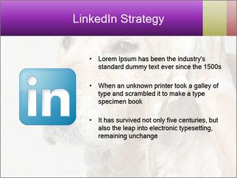 0000074715 PowerPoint Templates - Slide 12