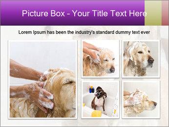 0000074715 PowerPoint Templates - Slide 19