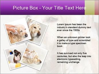 0000074715 PowerPoint Templates - Slide 23