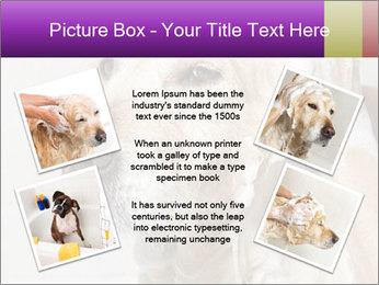 0000074715 PowerPoint Templates - Slide 24