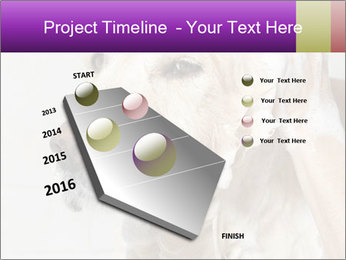 0000074715 PowerPoint Templates - Slide 26