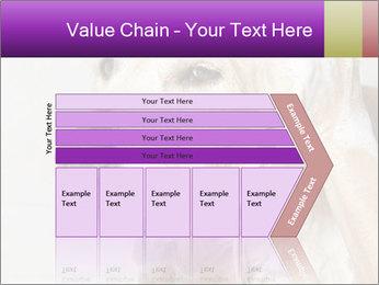 0000074715 PowerPoint Templates - Slide 27