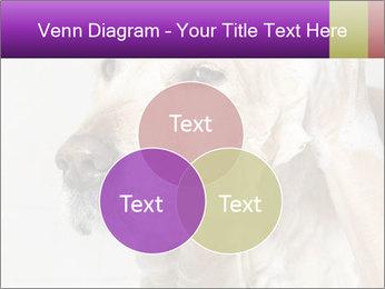 0000074715 PowerPoint Templates - Slide 33