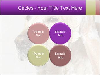 0000074715 PowerPoint Templates - Slide 38