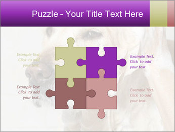 0000074715 PowerPoint Templates - Slide 43