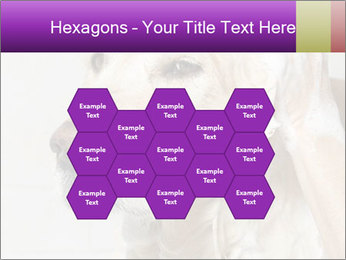 0000074715 PowerPoint Templates - Slide 44
