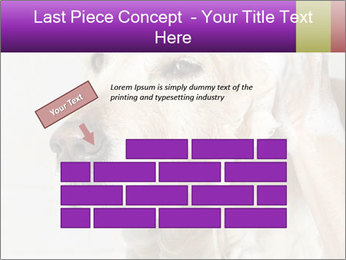 0000074715 PowerPoint Templates - Slide 46