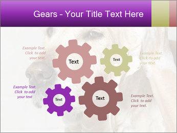 0000074715 PowerPoint Templates - Slide 47