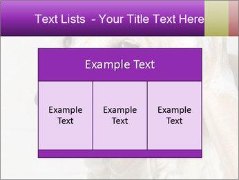 0000074715 PowerPoint Templates - Slide 59
