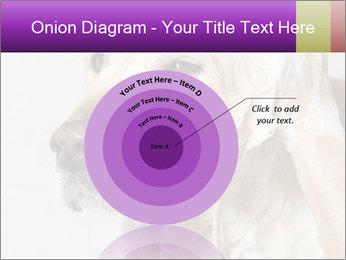 0000074715 PowerPoint Templates - Slide 61
