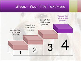 0000074715 PowerPoint Templates - Slide 64