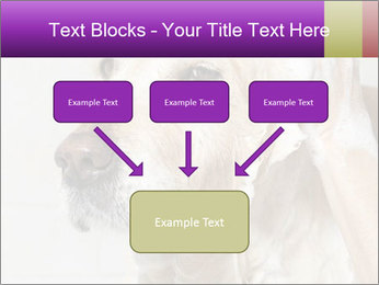 0000074715 PowerPoint Templates - Slide 70