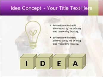 0000074715 PowerPoint Templates - Slide 80