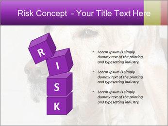0000074715 PowerPoint Templates - Slide 81